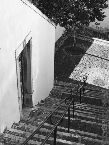 Lisboa... No People Built Structure Building Exterior Day Outdoors Architecture Sun Lisbon Lisboa Light And Shadow Black And White Blackandwhite Tree Stairs