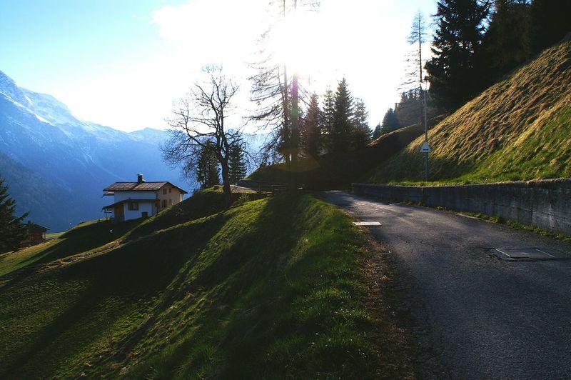 Little road Mountains Sauris Evening