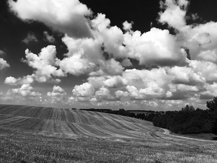 Dramatic white clouds in a dark sky over fields near Düsseldorf Field Nature Landscape Sky Outdoors Scenics Beauty In Nature Tranquil Scene Day Cloud - Sky Tranquility No People Agriculture Rural Scene blackandwhite