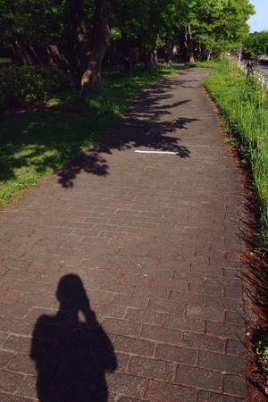 道に描かれたライン。Line drawn on the road.誰かにとってはスタート地点。Starting point for someone.誰かにとってはゴール地点。Goal point for someone.誰かにとっては通過地点。Passing point for someone.さあ、行こう。ラインの向こうへ。Now, let's go over the line. 熊本 大分 祈り Life Jogging In The Park 写ギング Ontheroad