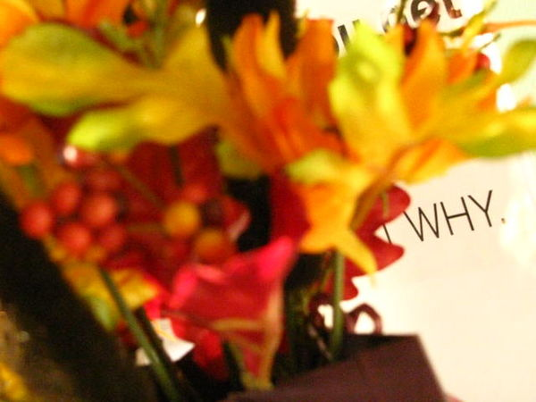 From my old Flickr account. Why Philosophy in One Word. TBT  2008 Throwback Teenage Years Flowers
