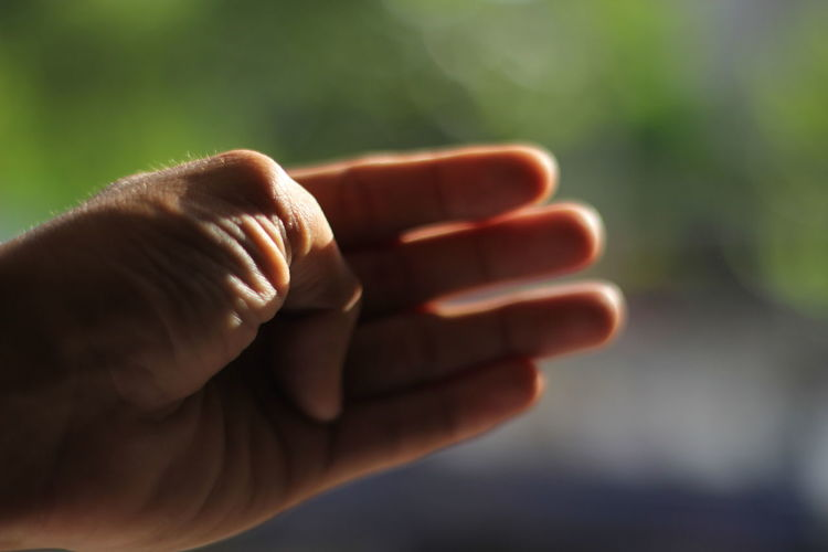 Close-up of human hand in sunlight