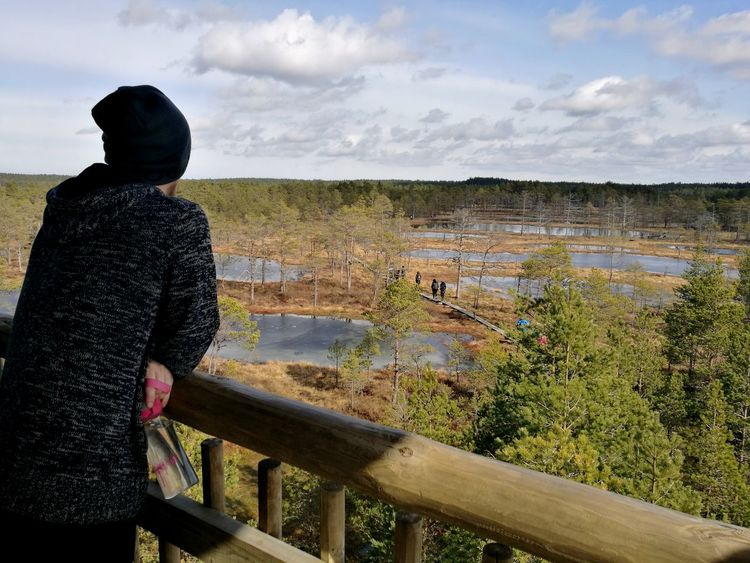 Outdoors Viru Bog Swamp Great View Observing Sunny Weather Outdoor Activity Estonian Nature Water And Moss Bog Personal Perspective Leisure Activity