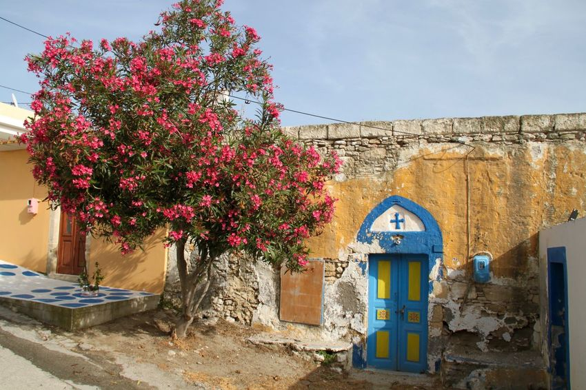 Greece Lachania Architecture Blooming Tree Blossom Tree Building Exterior Built Structure Colorful Door Doorporn Entrance Flower Greece Growth Lachania No People Residential Building Residential District Rhodes Ródos Whitewashed Paint The Town Yellow Been There. Architecture Building Wall - Building Feature House Entrance Wall