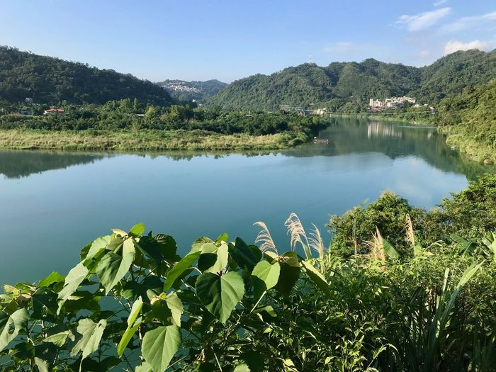 Plant Water Beauty In Nature Lake Tranquility Tranquil Scene Scenics - Nature Nature Growth Reflection Mountain Tree Day Sky Green Color No People Non-urban Scene Idyllic Leaf Outdoors