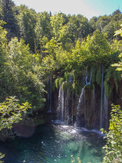 Plitvice, 07-18 Croatia Croazia Plitvice National Park Plitvice Lakes National Park Plitvice EyeEm EyeEm Best Shots EyeEmNewHere Travel Travel Photography Travel Destinations Nature Kodak Kodak Pixpro Tree Water Sunlight Forest Sky Green Color Flowing Water Stream - Flowing Water