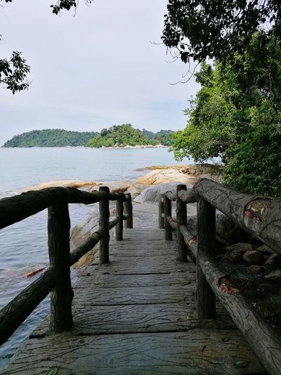 Tree Sea Water Tranquility Beach Tranquil Scene Nature Day Outdoors No People Sky Horizon Over Water Beauty In Nature Pangkor Island Malaysia