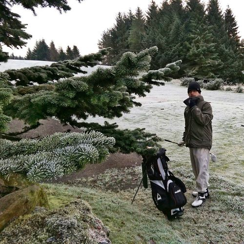 Golfing Winter Golf Winter Trees Frost