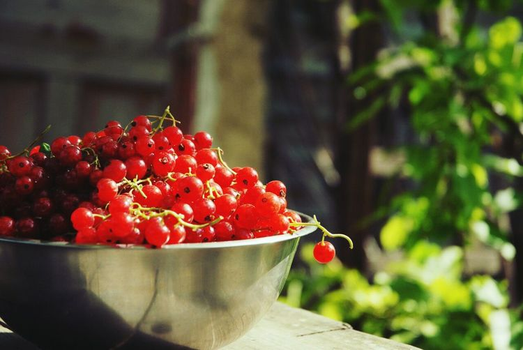 Red Currants In Container On Table