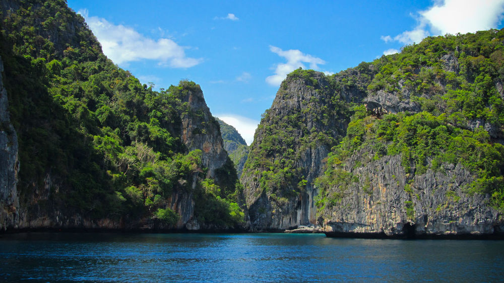 Koh Phi Phi, Thailand Maya Bay Phi Phi Phi Phi Islands, Thailand Beauty In Nature Cliff Day Landscape Mountain Nature No People Outdoors Phi Phi Island Phi Phi Island @phuket Rock - Object Rock Formation Scenics Sea Sky Tranquility Tree Water Waterfront
