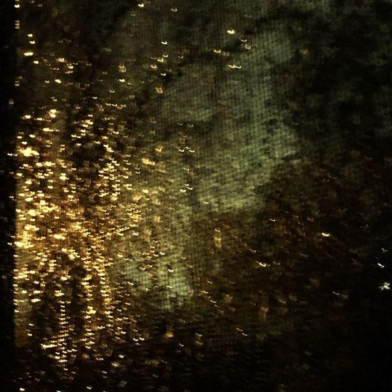 Showcase: February Taking Photos Raining Outside.