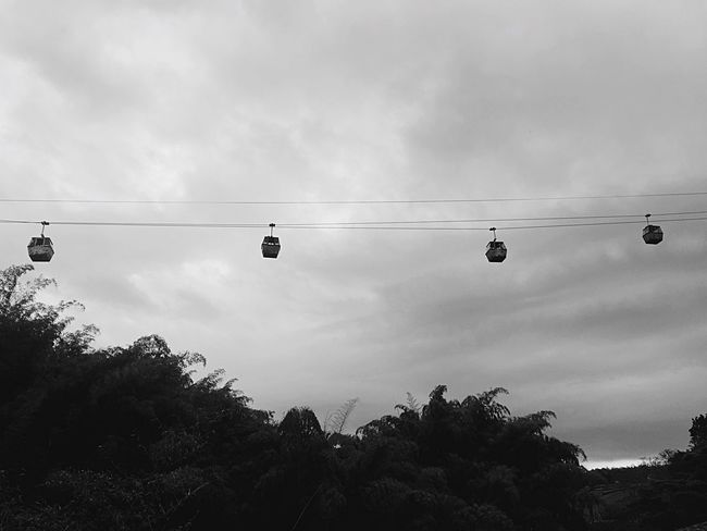 Cableway Sky Blackandwhite Air Flight Coffeeculture Landscape Colombia Nature