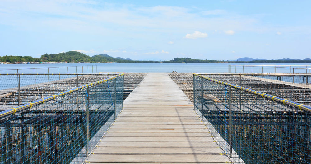 Bridge Bridge - Man Made Structure Bridge Over Water Bridge View Bridges Day Farm Life Farming Nature No People Outdoors Sea Sea And Sky Sea View Seascape Seaside Season  Shell SHELLFISH  Shells Shells🐚 Sky Thailand Water Wheelchair Access