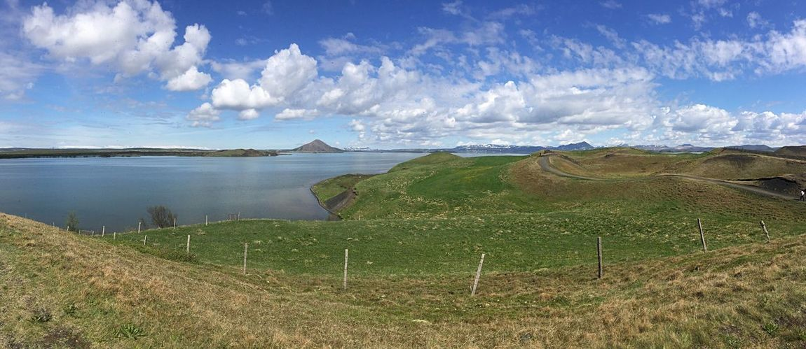 lake myvatn Tranquil Scene Nature Tranquility Sky Beauty In Nature Landscape Grass Scenics Cloud - Sky Outdoors Field Green Color Non-urban Scene Idyllic Day No People Growth Mountain Agriculture Water Iceland