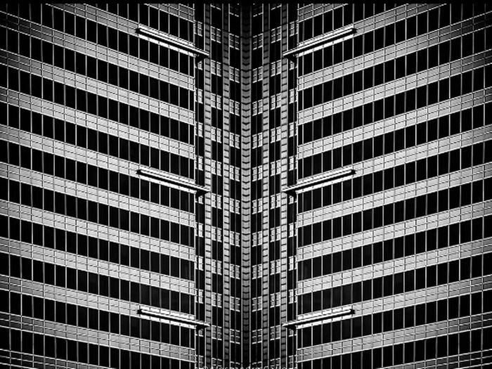 Taking Photos Professional Amateurphotography Hotshot First Eyeem Photo Popular Photos Black And White Black & White