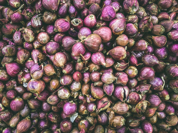 Full frame shot of purple shallot for sale in market