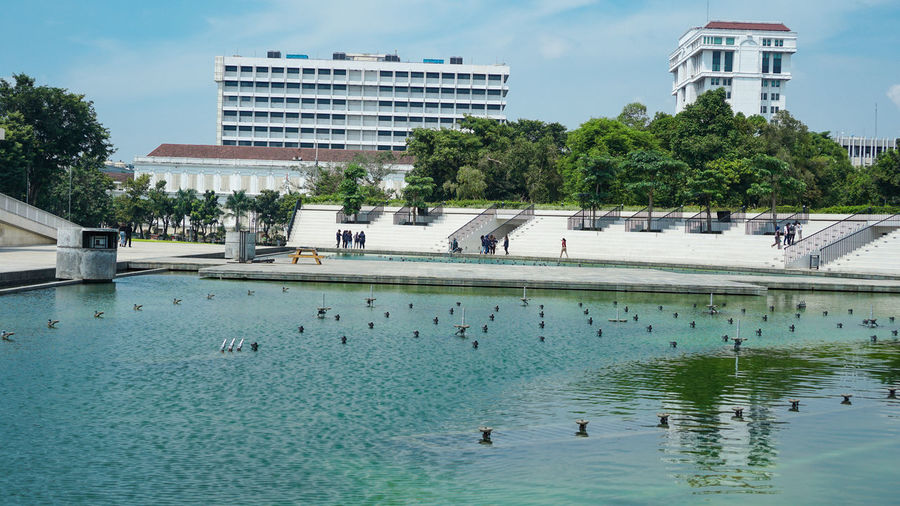 View of birds swimming in pool