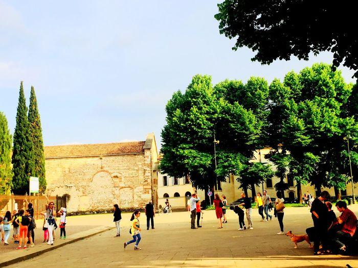 Verona Piazza San Zeno Afternoon Scenery Urban Scenes Street Scene