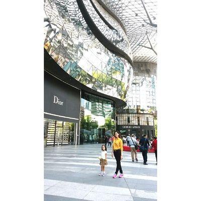 ♥.♡ Tet2014 FiveByAll Singapore Yearofthehorse