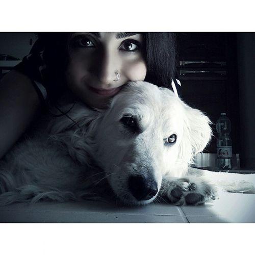 Love u~ Cane Dog Dolcezza Sweet Sweets Canebianco Occhidolci Dolcissimi Zampa Amy ha Sonno Sorriso Bw Blackandwhite Pet Pets Petstagram
