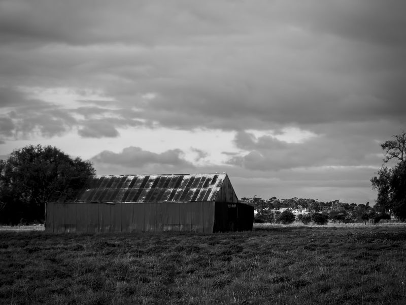 old farm shed EyeEm Best Shots - Black + White EyeEm Black&white! EyeEmNewHere Rural Rustic Agricultural Building Agriculture Architecture Barn Black And White Black And White Photography Building Exterior Built Structure Environment Farm Land Landscape Nature Old Old Buildings Outdoors Rural Scene Rusty Rusty Roof Shed