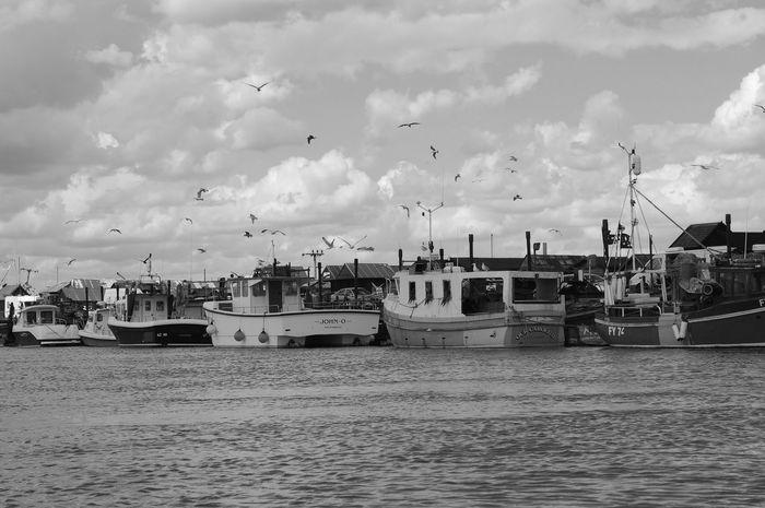 Blackandwhite England Ferry Fishingboats Harbour River Sea Seagulls Southwold Suffolk