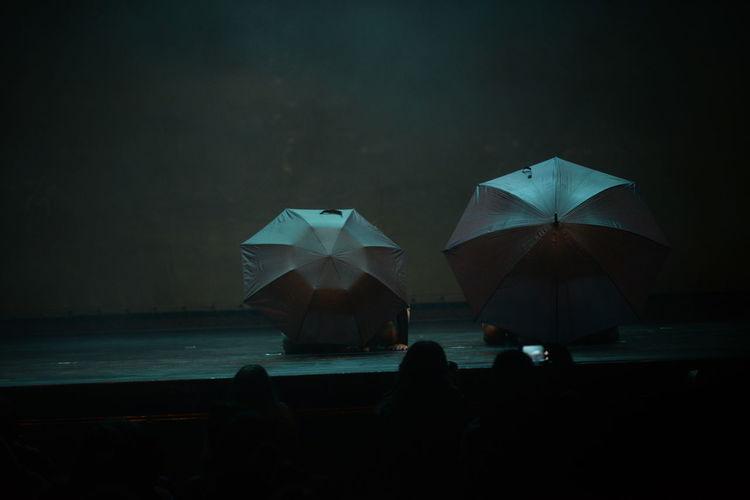 Danza Show