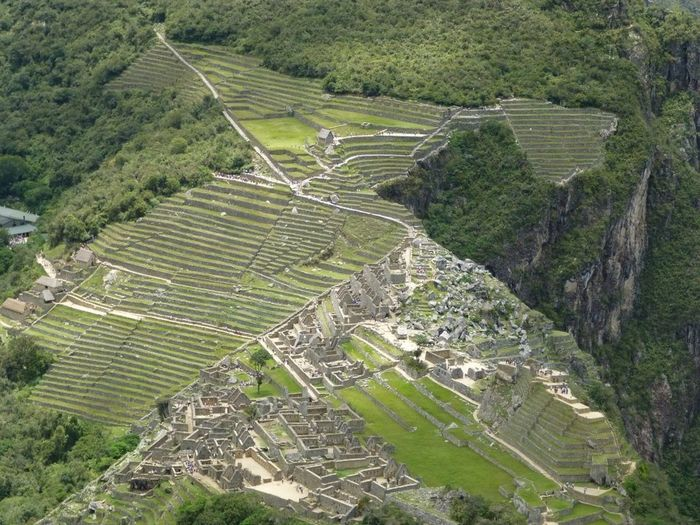 Landscape High Angle View Environment Scenics - Nature Plant Tranquil Scene Ancient Civilization Outdoors Aerial View Machu Picchu