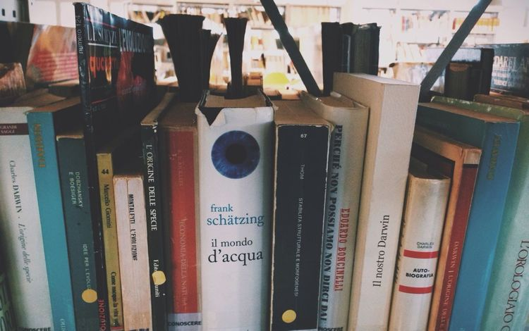 Books Studying Words Wisdom