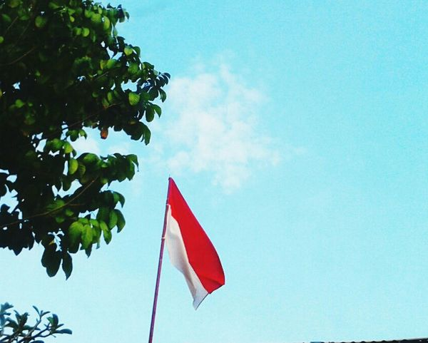 Happy Independence Day of Republik Indonesia RI70 INDONESIA