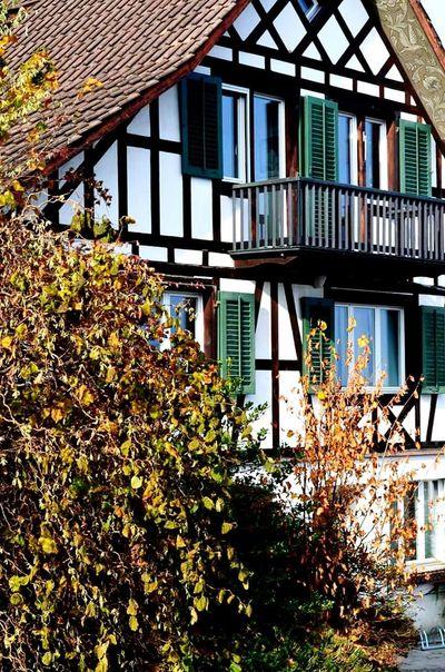Zurich, Switzerland Zürich Nikon D5200 Travel Photography :-)) Hello World Life Switzerland_2016 Switzerland