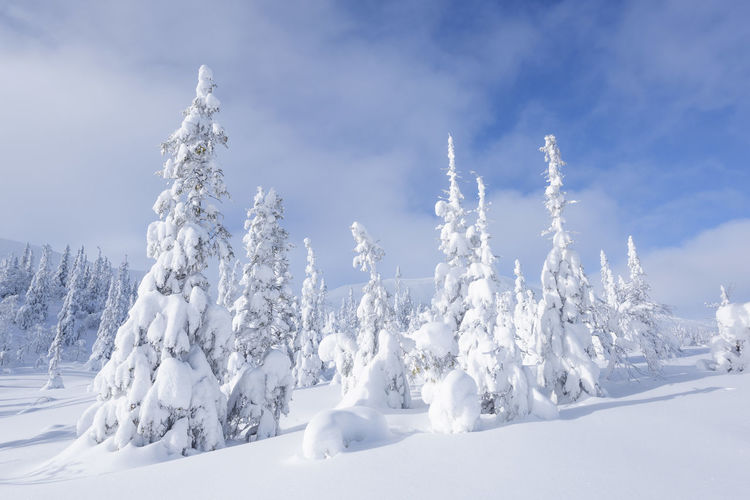 Panoramic view of snow covered landscape against sky