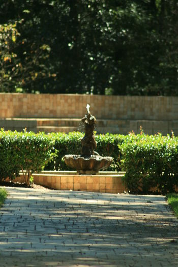 Statue of fountain
