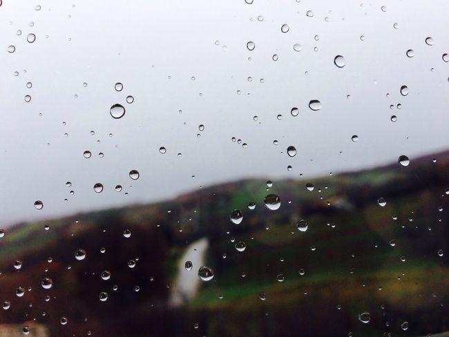 Rain... ?