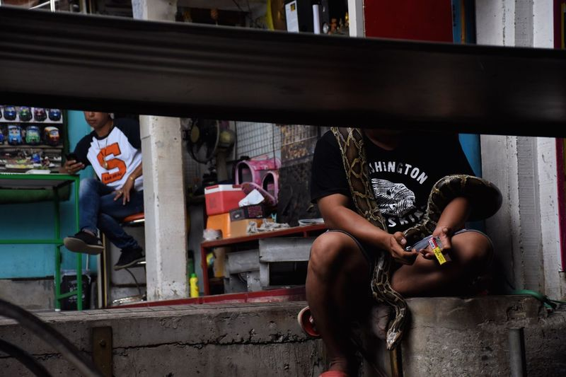 Attraction touristed. Snake No Face People Thailand Floating Floating Market Market Floating Market Dumnoen Saduak Bangkok Tourism Streetphotography The Street Photographer - 2017 EyeEm Awards Pet Portraits Adventures In The City
