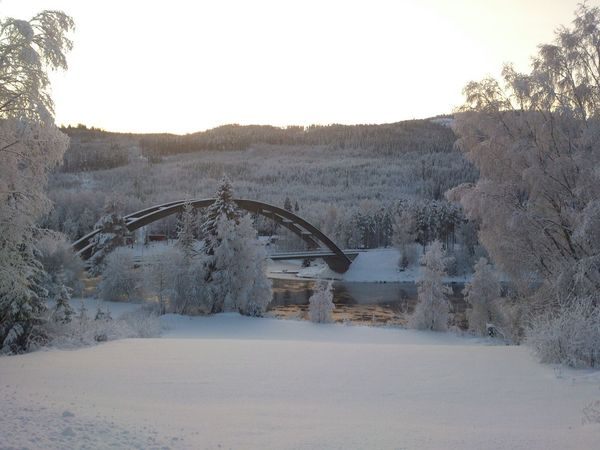 landscape 1- Winter Winter_picsYes