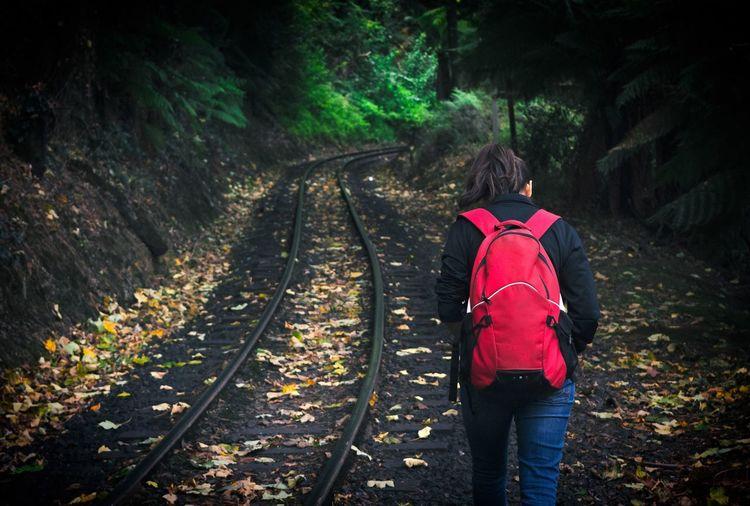 Rear view of person walking along railroad tracks