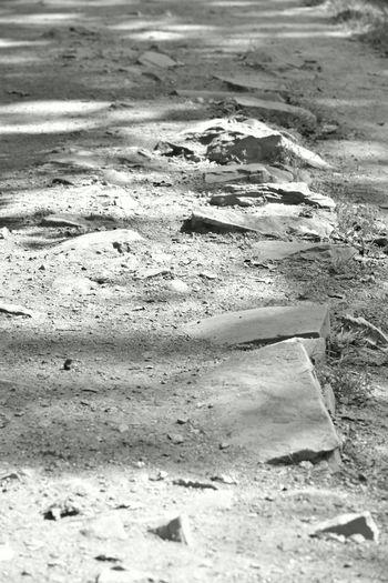 Greatfalls Virginia Rocks Path Taking Photos EyeEm Best Shots Nature Photography Blackandwhite Photography Monochrome Nikonphotography