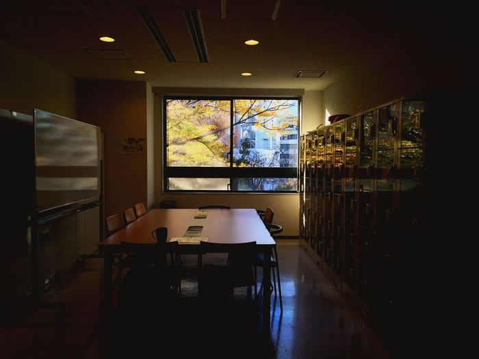 autumn threw the window Class Graduation Shadow Shadows & Lights Memories Nostalgia White Board Desk Locker Window University College School Fall Autumn EyeEm Selects Indoors  Window Table Architecture Home Interior No People Built Structure Domestic Room Day Nature EyeEmNewHere
