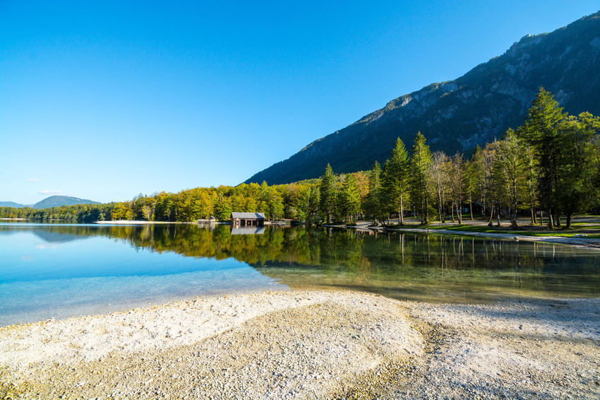 Nature Sky Day Bohinjsko Jezero Water Beauty In Nature Mountain Tranquility Lake Scenics - Nature Tranquil Scene Reflection Tree Plant Idyllic No People Non-urban Scene Clear Sky Blue Mountain Range Outdoors