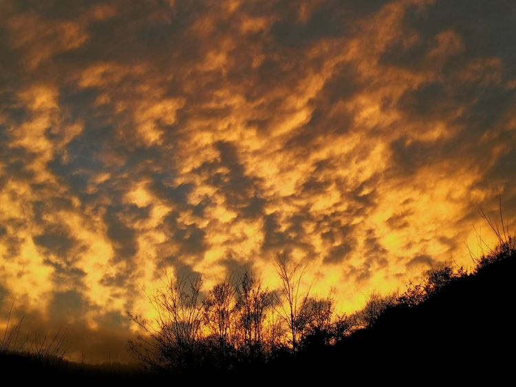 Fuegoinelsky Sunset Silhouette Dramatic Sky Beauty In Nature Cloud - Sky Sky Nature No People Tranquil Scene