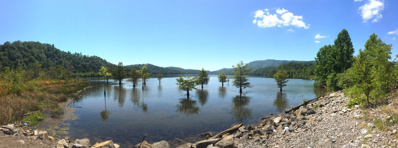 Lake Ocoee Lake Nature Water Tree Landscape Outdoors No People Sky Beauty In Nature Day Hello World Check This Out Taking Photos Travel Destinations Tranquility Tranquil Scene Summer Lake Ocoee Tennessee