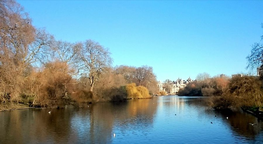 Taking Photos Relaxing St James Park London  Water Reflections Blue Sky Landscape_Collection Landscape Photography Landscapes With WhiteWall Blue Wave Pmg_lon