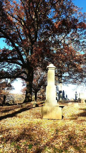 Cemetary Beauty Fall Days Leaves Autumnal Bliss