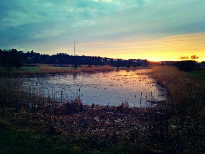 Sunset Strömstad