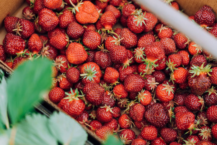 High angle view of strawberries in market