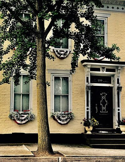 MAIN STREET Building Exterior Architecture Built Structure Tree Outdoors Day Door Window No People City Building Street