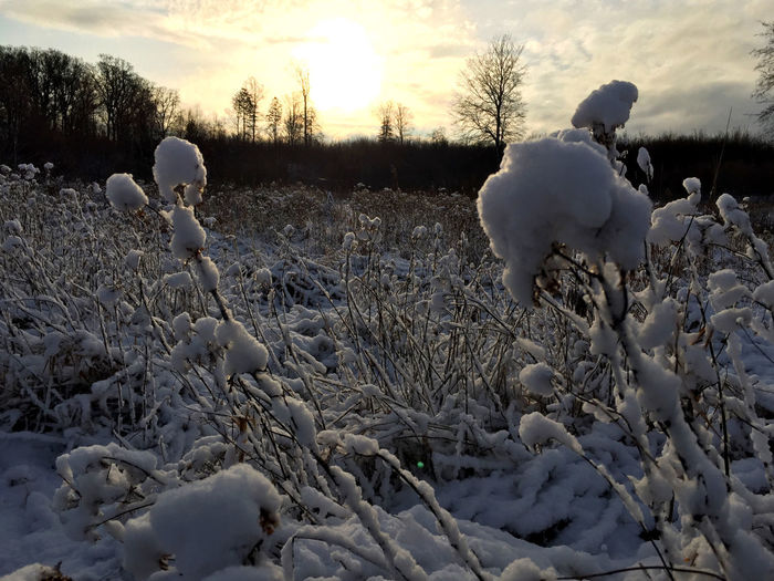 White snow on field against sky during sunset