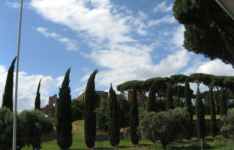 Ancient Beauty In Nature Blue Cloud Cloud - Sky Cloudy Famous Place First Eyeem Photo Formal Garden Garden Growth In A Row Italy No People Outdoors Park Plant Road Scenics Sky Solitude Tourist Attraction  Tranquil Scene Tree Zypresses View To Forum Romanu