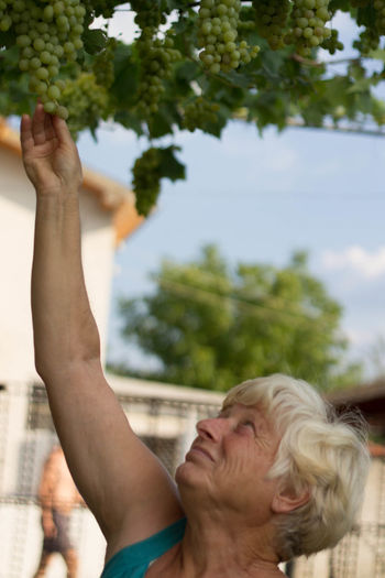 Grape Wine Grapes Human Body Part Human Hand Tree People Human Arm Outdoors Adult Close-up One Woman Only One Person Young Adult Day Nature Granny Grandma Grandmas Garden